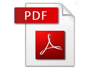 PDF Datei Bild